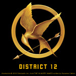 Official Mockingjay 13 District Blog Tour