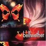Book Review: <em>Bellwether</em> by Connie Willis