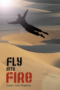 Fly into Fire