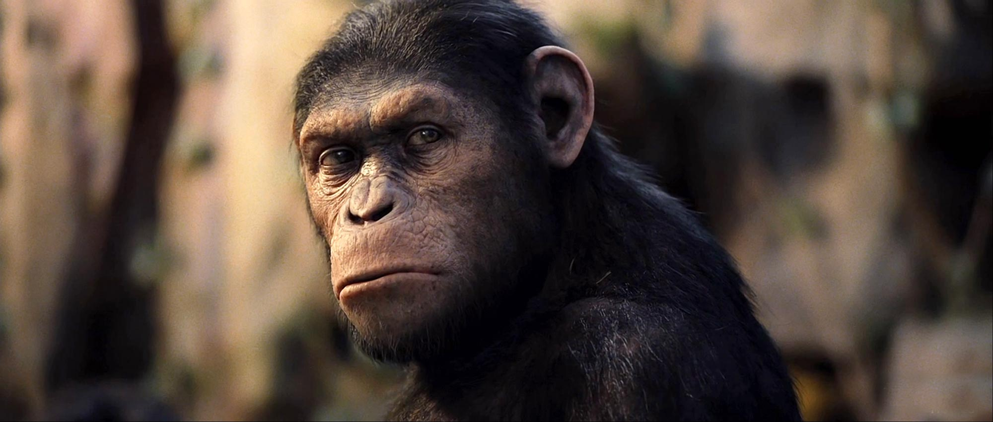 Movie Review: Rise of the Planet of the Apes | The Book ...