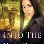 Joint Review: <i>Into the Wise Dark</i> by Neesha Meminger