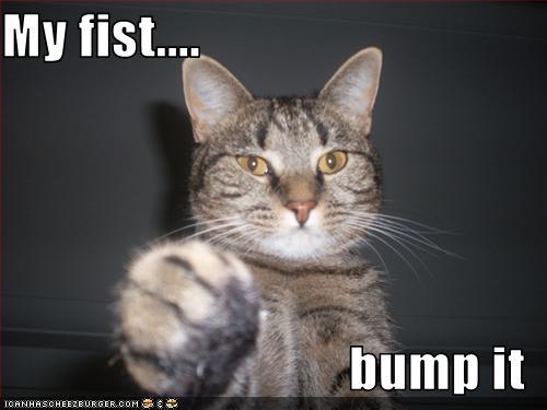 Funny fist bumps