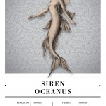 Siren Oceanus