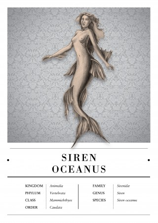 Siren Oceanus