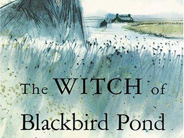 Decoding the Newbery: The Witch of Blackbird Pond by Elizabeth ...