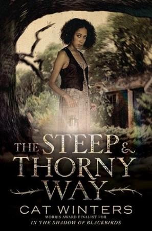 Steep and Thorny Way