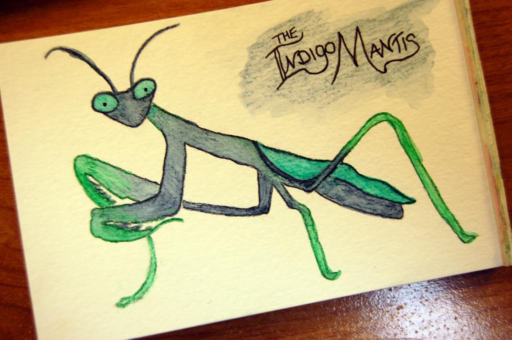 indigo-mantis